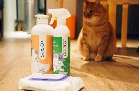 貓奴大掃除三步驟,臭味滾讓你的租屋處永遠清新無異味 封面圖